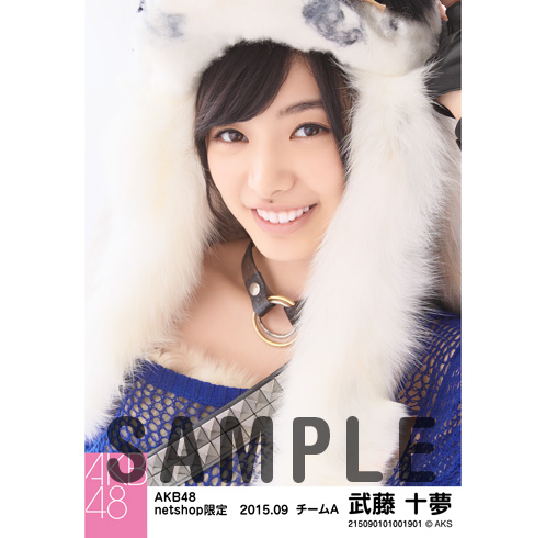 AKB48 2015年9月度 net shop限定個別生写真5枚セット 武藤十夢