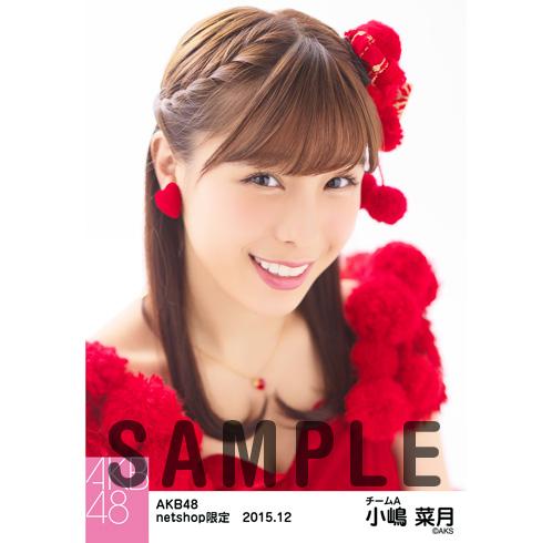 AKB48 2015年12月度 net shop限定個別生写真5枚セット 小嶋菜月