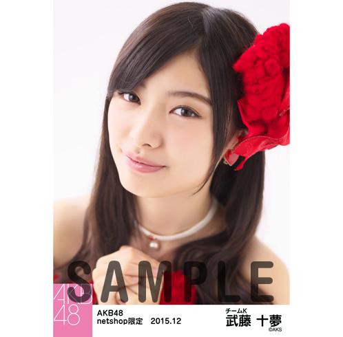 AKB48 2015年12月度 net shop限定個別生写真5枚セット 武藤十夢