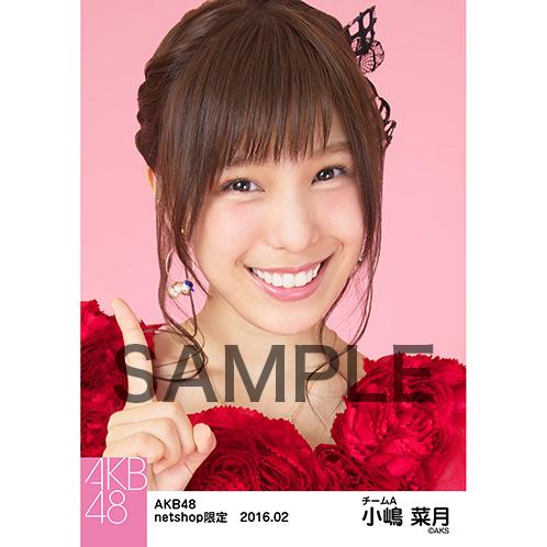 AKB48 2016年2月度 net shop限定個別生写真「赤ドレス」5枚セット小嶋菜月