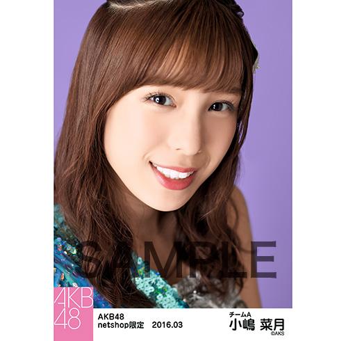 AKB48 2016年3月度 net shop限定個別生写真 「回遊魚のキャパシティ」5枚セット 小嶋菜月