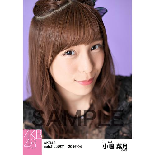 AKB48 2016年4月度 net shop限定個別生写真 「アゲハ蝶」5枚セット 小嶋菜月