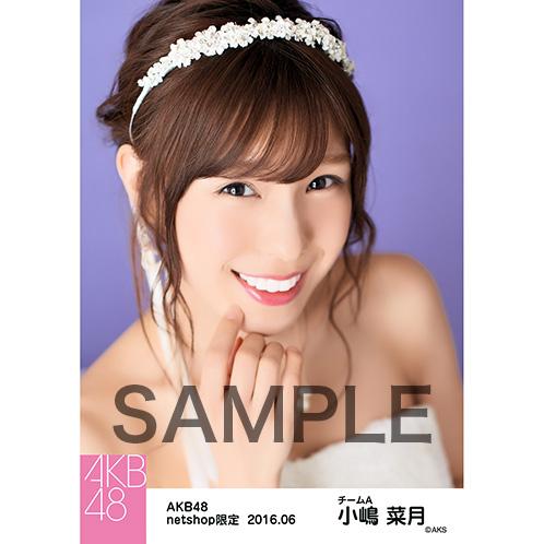 AKB48 2016年6月度 net shop限定個別生写真 「君にウェディングドレスを... 」衣装II 5枚セット 小嶋菜月