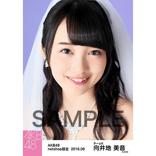 AKB48 2016年6月度 net shop限定個別生写真 「君にウェディングドレスを 」衣装II 5枚セット 向井地美音