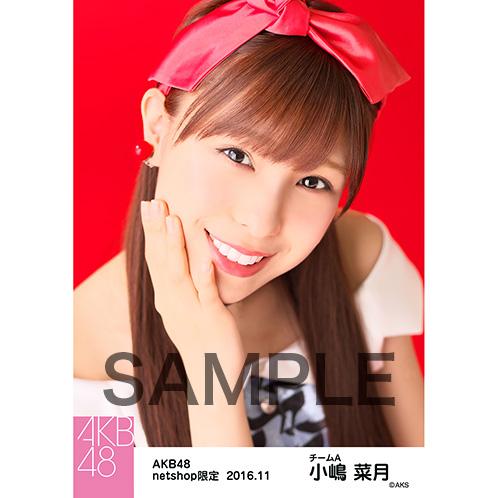 AKB48 2016年11月度 net shop限定個別生写真 「レトロワンピ」5枚セット 小嶋菜月