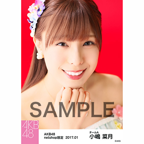 AKB48 2017年1月度 net shop限定個別生写真 「2016横浜スタジアム 愛の存在」衣装5枚セット 小嶋菜月