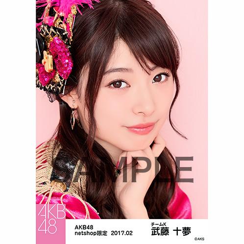 AKB48 2017年2月度 net shop限定個別生写真 「ピンク鼓笛隊」衣装5枚セット 武藤十夢