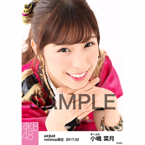 AKB48 2017年2月度 net shop限定個別生写真 「ピンク鼓笛隊」衣装II5枚セット 小嶋菜月
