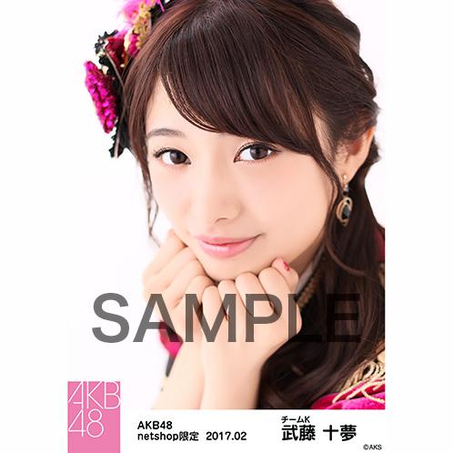 AKB48 2017年2月度 net shop限定個別生写真 「ピンク鼓笛隊」衣装II5枚セット 武藤十夢