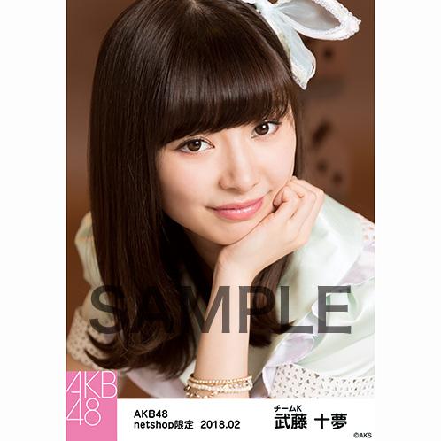 AKB48 2018年2月度 net shop限定個別生写真「パステルエプロン」衣装5枚セット 武藤十夢