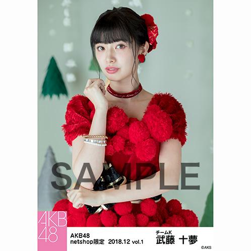 AKB48 2018年12月度 net shop限定個別生写真5枚セットvol.1 武藤十夢