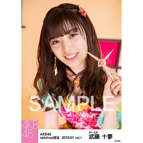 AKB48 2019年1月度 net shop限定個別生写真5枚セットvol.1 武藤十夢