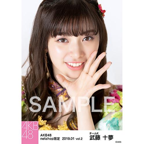 AKB48 2019年1月度 net shop限定個別生写真5枚セットvol.2 武藤十夢