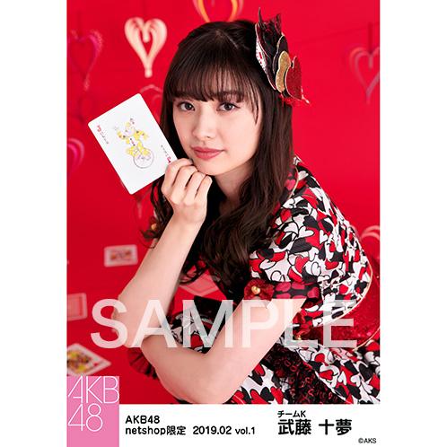 AKB48 2019年2月度 net shop限定個別生写真5枚セットvol.1 武藤十夢