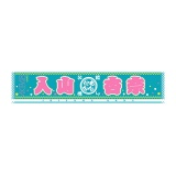 AKB48 推しマフラータオル3 入山杏奈