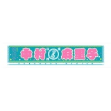 AKB48 推しマフラータオル3 中村麻里子