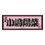 AKB48 推し大判タオル 小嶋 陽菜