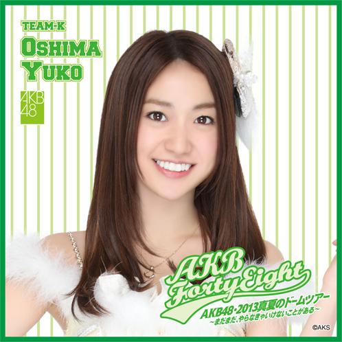 AKB48 ドームツアー2013 推しタオル 大島優子