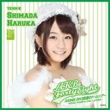 AKB48 ドームツアー2013 推しタオル 島田晴香