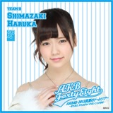AKB48 ドームツアー2013 推しタオル 島崎遥香