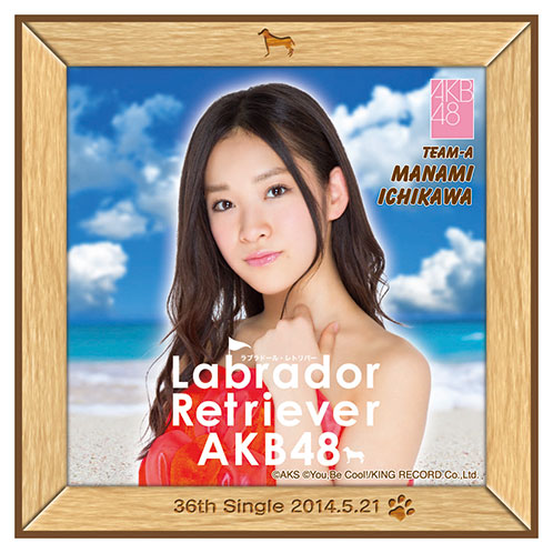 AKB48 ラブラドール・レトリバー推しタオル 市川 愛美