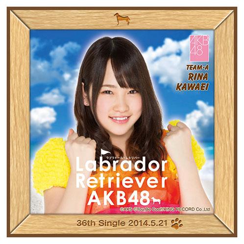 AKB48 ラブラドール・レトリバー推しタオル 川栄 李奈