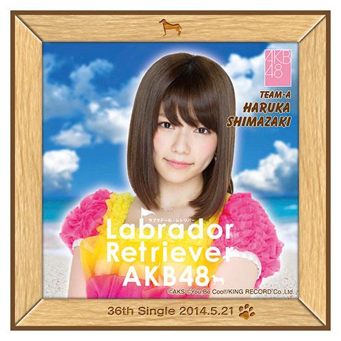 AKB48 ラブラドール・レトリバー推しタオル 島崎 遥香