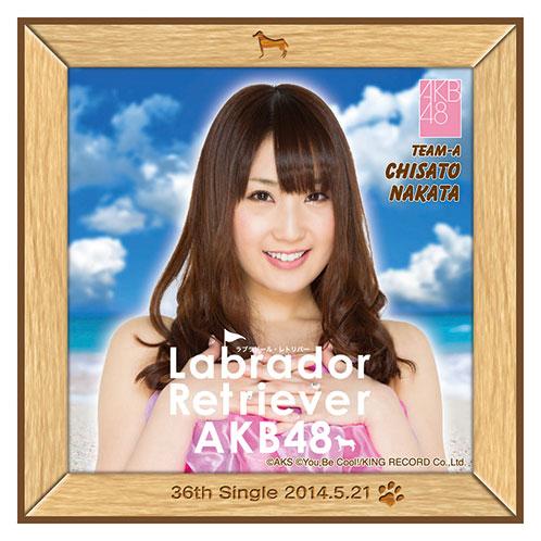 AKB48 ラブラドール・レトリバー推しタオル 中田 ちさと