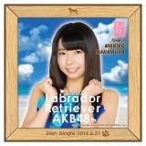 AKB48 ラブラドール・レトリバー推しタオル 中村 麻里子