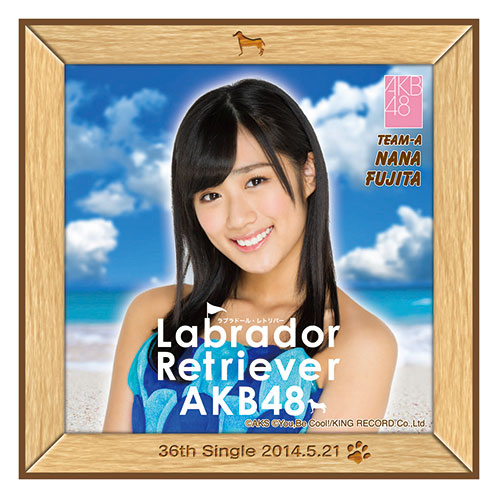AKB48 ラブラドール・レトリバー推しタオル 藤田 奈那