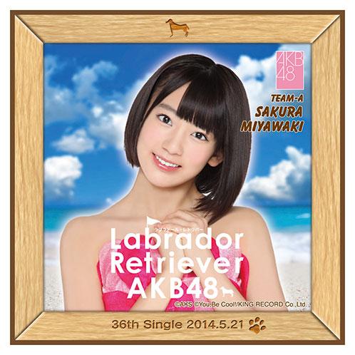 AKB48 ラブラドール・レトリバー推しタオル 宮脇 咲良