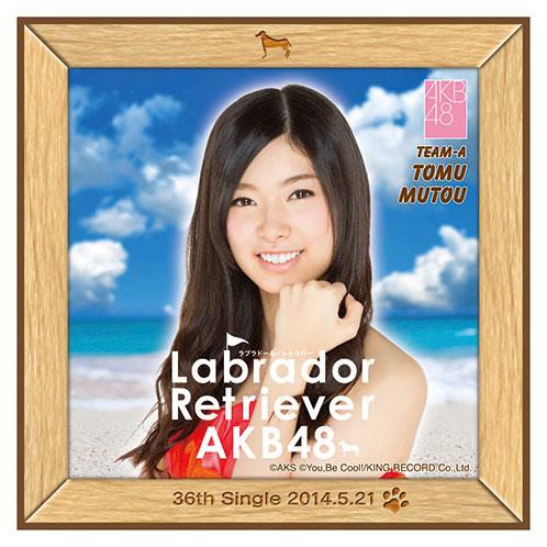 AKB48 ラブラドール・レトリバー推しタオル 武藤 十夢