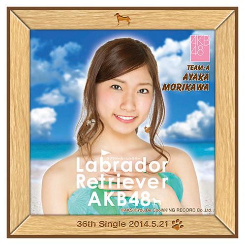 AKB48 ラブラドール・レトリバー推しタオル 森川 彩香