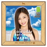 AKB48 ラブラドール・レトリバー推しタオル 相笠 萌
