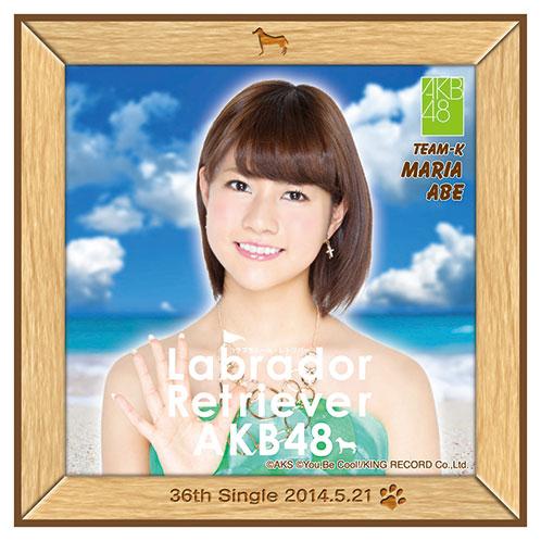 AKB48 ラブラドール・レトリバー推しタオル 阿部 マリア