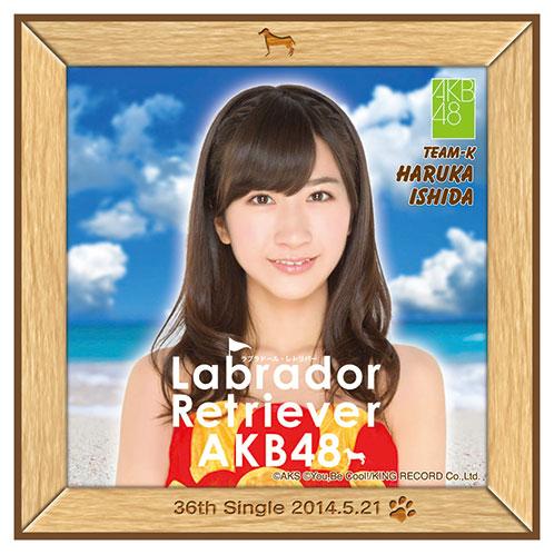 AKB48 ラブラドール・レトリバー推しタオル 石田 晴香