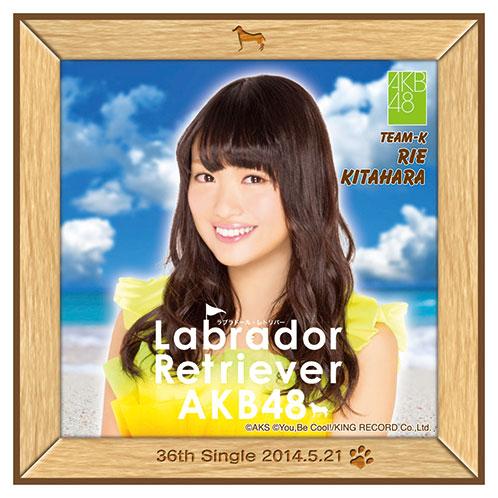AKB48 ラブラドール・レトリバー推しタオル 北原 里英
