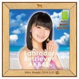 AKB48 ラブラドール・レトリバー推しタオル 小嶋 真子
