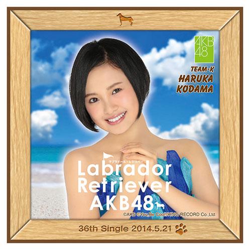 AKB48 ラブラドール・レトリバー推しタオル 兒玉 遥