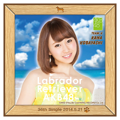 AKB48 ラブラドール・レトリバー推しタオル 小林 香菜