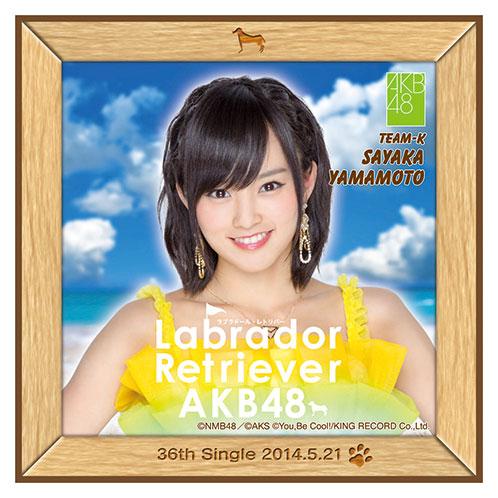 AKB48 ラブラドール・レトリバー推しタオル 山本 彩
