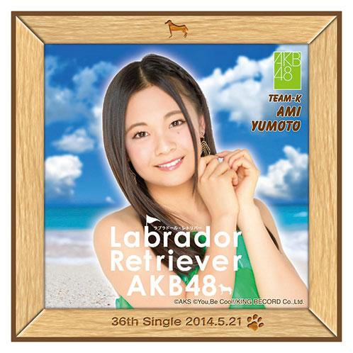 AKB48 ラブラドール・レトリバー推しタオル 湯本 亜美