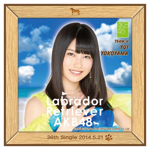 AKB48 ラブラドール・レトリバー推しタオル 横山 由依