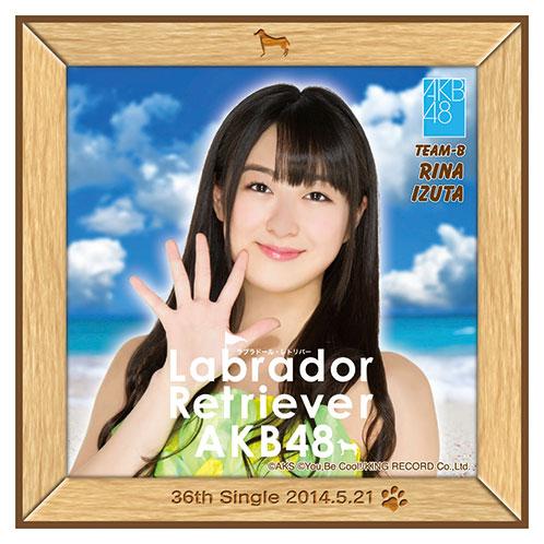 AKB48 ラブラドール・レトリバー推しタオル 伊豆田 莉奈