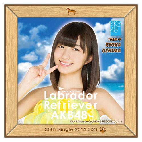 AKB48 ラブラドール・レトリバー推しタオル 大島 涼花