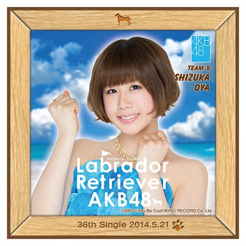 AKB48 ラブラドール・レトリバー推しタオル 大家 志津香