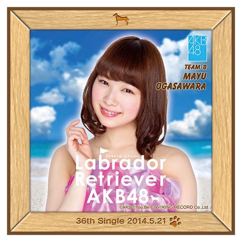 AKB48 ラブラドール・レトリバー推しタオル 小笠原 茉由