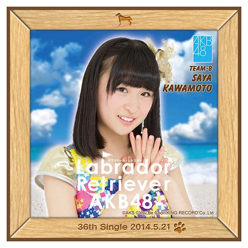 AKB48 ラブラドール・レトリバー推しタオル 川本 紗矢