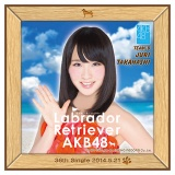 AKB48 ラブラドール・レトリバー推しタオル 高橋 朱里