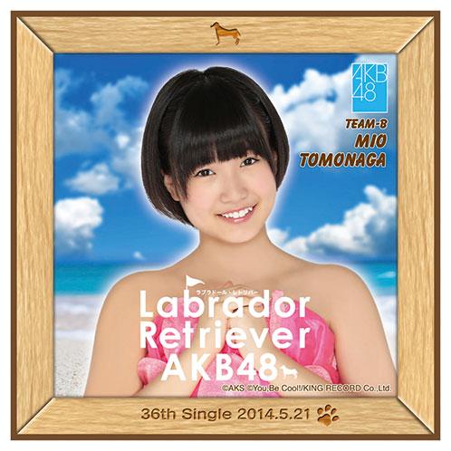 AKB48 ラブラドール・レトリバー推しタオル 朝長 美桜